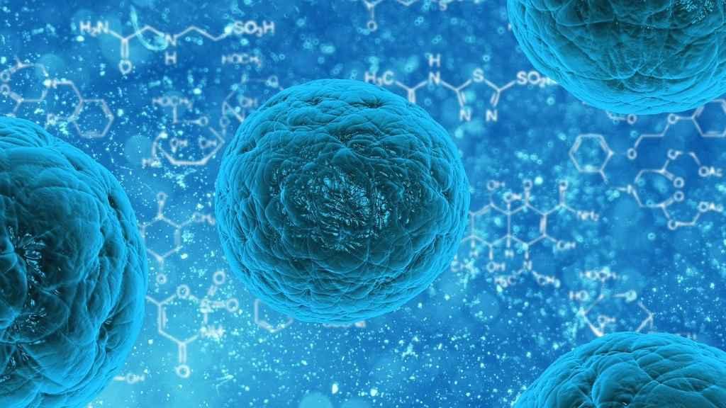 Что такое вирус? Как он распространяется? Как от него заболевают?
