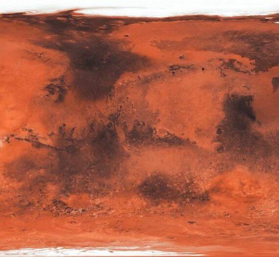 Главный ученый NASA говорит, что жизнь на Марсе может быть найдена в течение года, но мир «не подготовлен»